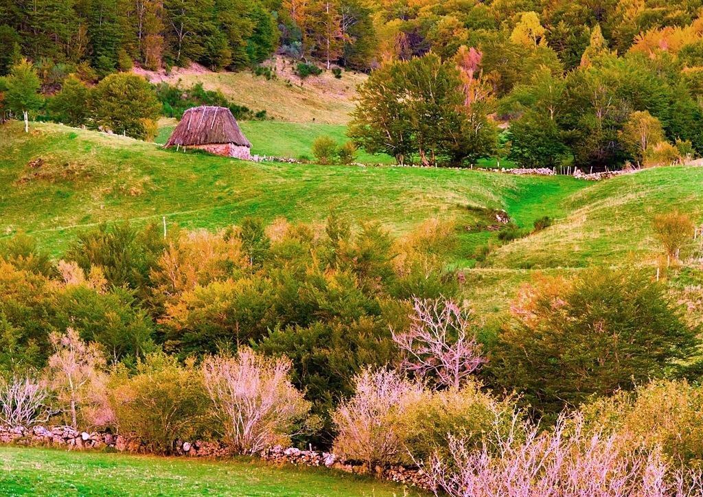 3. Paisaje de otoño en Somiedo. Autor, Cangués