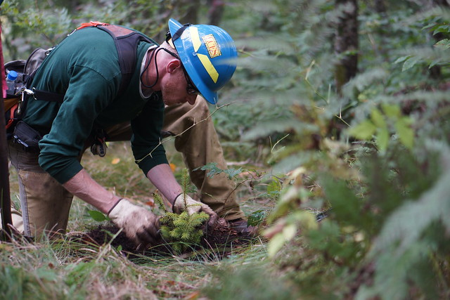 North carolina wildlife technician charles lawson plants a for Nc fish and wildlife