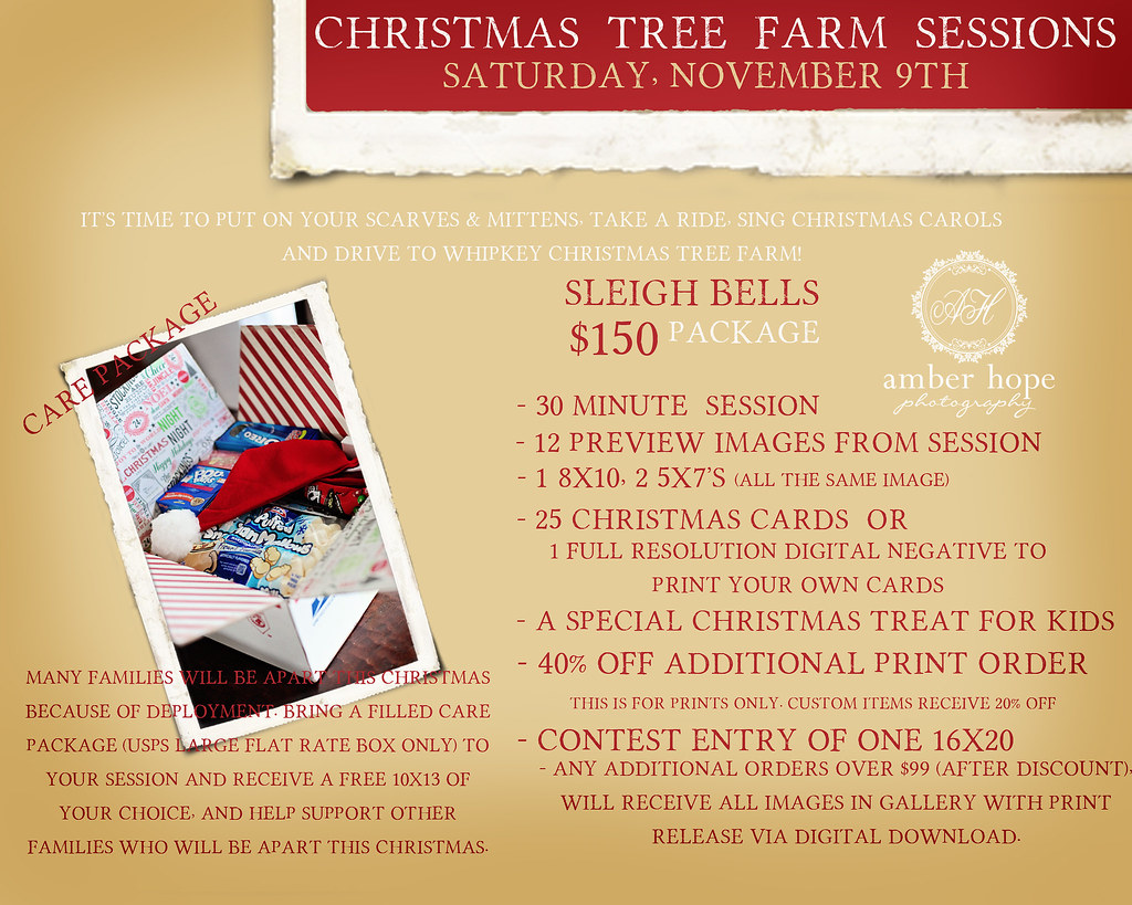 THE CHRISTMAS TREE FARM SESSION CP 3