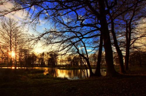 sunset tree water canon landscape evning drohiczyn cesarz marcelxyz