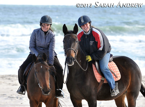 A perfect day for a beach ride! Horse Rescue United volunteers bring two Standardbred mares to Island Beach State Park for a ride.