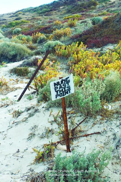 point drummond nude beach