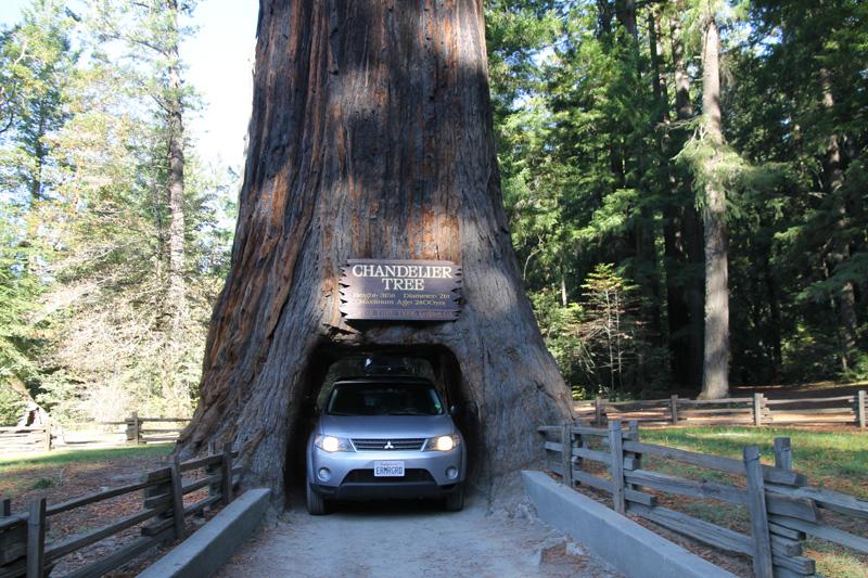 Oregon Trip October 2013