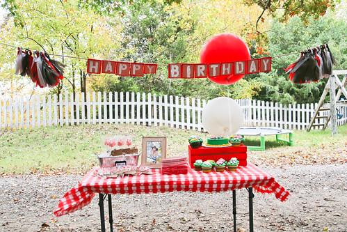 Andrew's 2nd Birthday-9.jpg