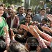 Priyanka Gandhi visits Raebareli, interacts with people 16