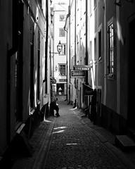 Stockholm Light II