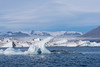 Jokulsarlon Ice Polar Bear? by Mark Heeney UK