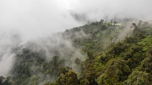 mountain fog clouds forest canon highlands rainforest cloudy foggy tram hills adobe malaysia cablecar kualalumpur pahang lightroom 6d bentong gentinghighlands canon6d lightroom5