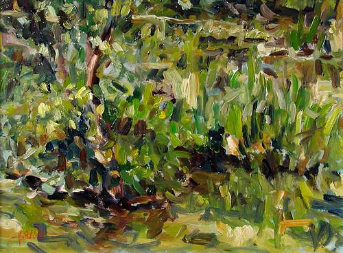 Pond Tiefenbach