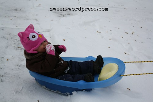 diy baby sled from baby bath tub zween. Black Bedroom Furniture Sets. Home Design Ideas