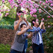 The peach blossom boys by catherinelaceyphoto
