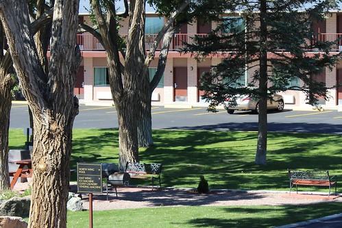 IMG_2847b_Park_at_Best_Western_Alamosa