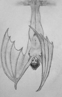 Batkin