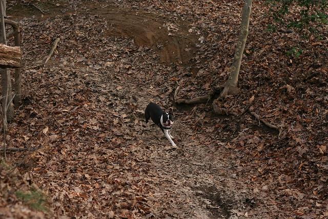 Charlie Powhite Hike Feb 2 (48)
