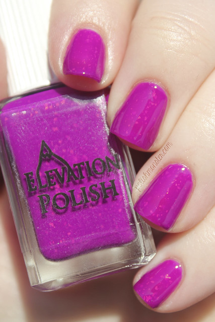 Elevation Polish XXH #14