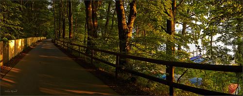 leica sunset panorama juni germany bayern deutschland bavaria abend sonnenuntergang zaun starnbergersee m9 seestrase leicasummilux35mmf14asphii colorefexpro4 captureone7