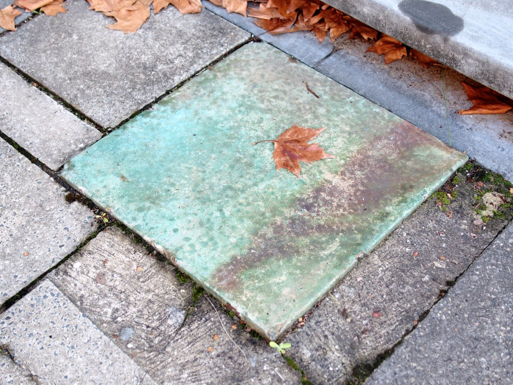 Leaf on green cement block