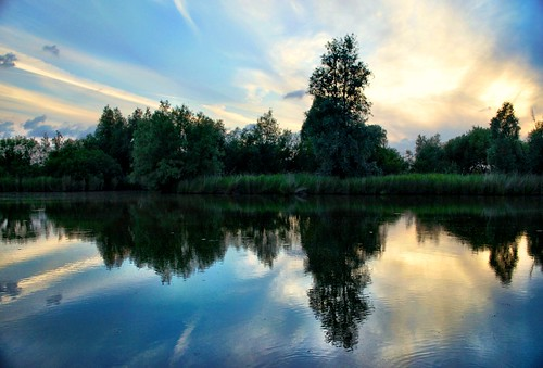 blue trees cloud reflection tree green nature water clouds reflections nikon ngc d5100