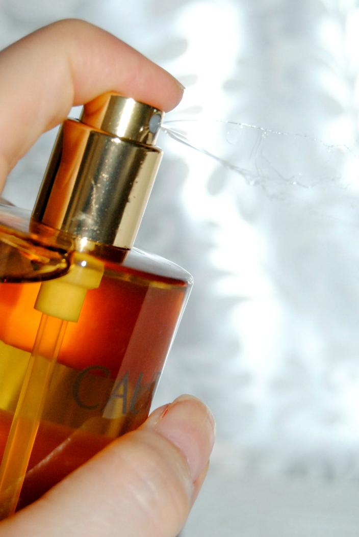 Caudalie Divine Oil (6)