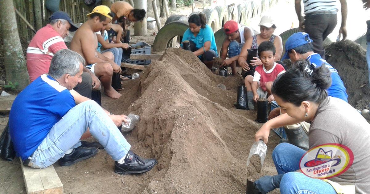En la Tablada de Sánchez siembran 5 mil plantas de cacao