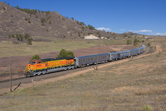 BNSF 4405 Larkspur 4 May 10