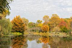 Fall at Lake Gardiner