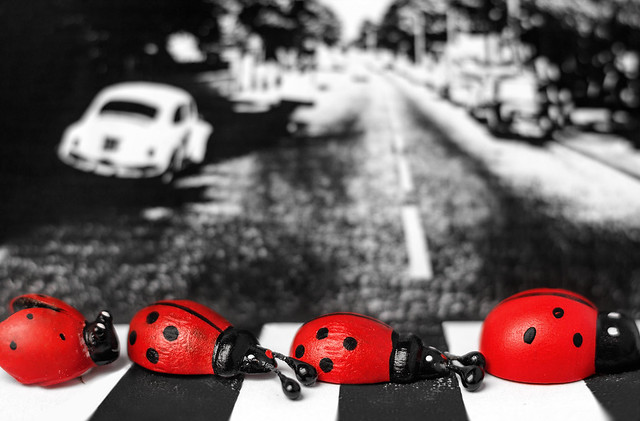 The Beetles, Canon EOS 550D, Canon EF 50mm f/1.4 USM