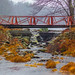 Flowing Under A Red Bridge by Catskills Photography