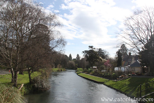 Avon River, Christchurch