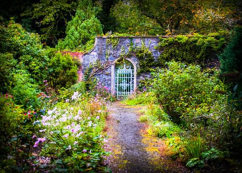 jardin secreto frente a sinceridad absoluta
