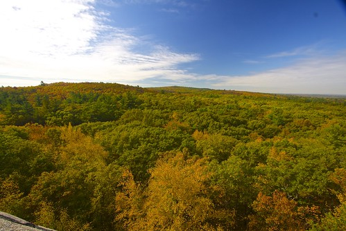 Fall colors in The Blue Hills Reservation. by B.MacLean
