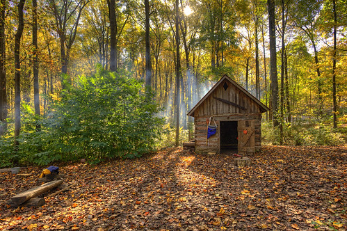 autumn nature leaves forest fire smoke rustic maryland axe chopped mothernature wheaton wooded woodshed glenallen flickrfriday maytheforcebewithyou brooksidenaturecenter edwardkreis dkiphotography