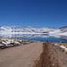 Lagunas Altiplânicas - Atacama - Chile by Lélia Valduga