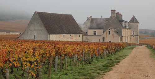 france automne wine burgundy bourgogne vigne vins clos vougeot