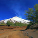 Live Volcano South Chile by Zeev S