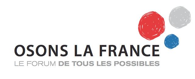 Osons la France à Lille, le 15 novembre 2013
