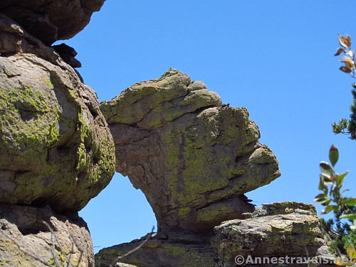 The Pharaoh, Heart of Rocks Loop Trail, Chiricahua National Monument, Arizona