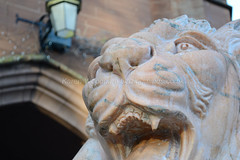 Ruthin Castle Lion Close-Up