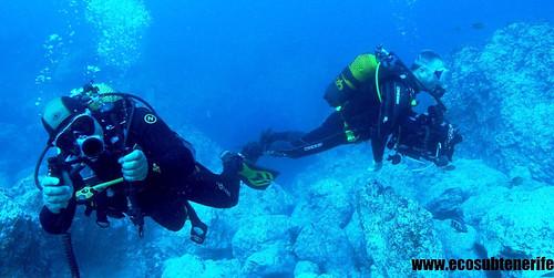 Diving, Tenerife
