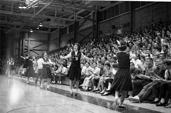 FSU cheerleaders during a basketball game in Tully Gym in Tallahassee, Florida