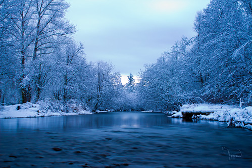 longexposure blue trees winter snow ice nature water creek canon river landscape stream shoreline atmosphere deschutes washingtonstate softwater t4i bigstopper 1riverat matthewreichel