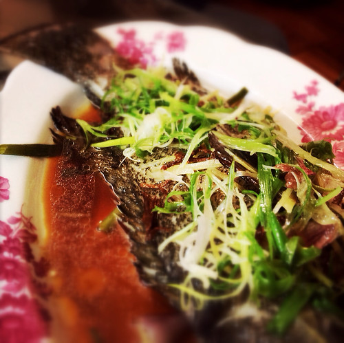 Steamed, Garoupa, Fish,  蒸, 石斑, hong kong, chinese, recipe, grouper