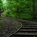 Seton Falls Park trail steps by JeffReuben