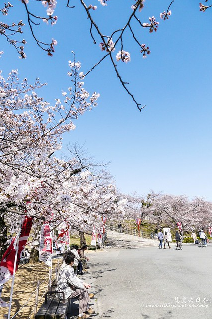 0331D6姬路、神戶_71