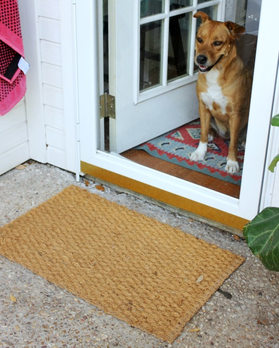 Hi Sugarplum | DIY Colorblock Doormat