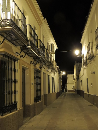 <Calle Domingo Manfredi> Aznalcazar (Sevilla)