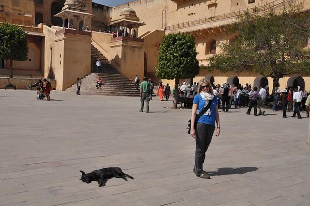 India_Trip_430