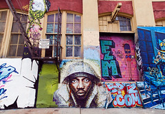 5 Pointz Aerosol Art Center, Inc.  See it while you still can.