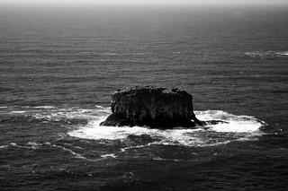 Island (B&W)