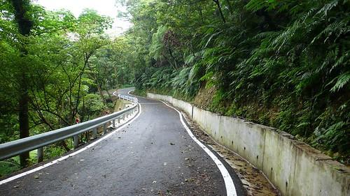 密集的高山道路,安全性不詳,更帶來未知的生態衝擊。(攝影:林宗以)